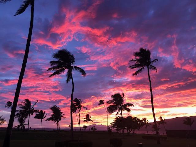 ハワイより美味しい