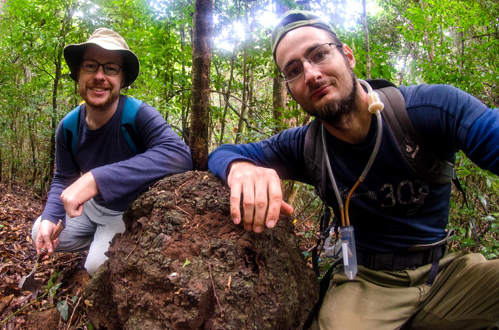 (左から)トーマス・ブルギニョン准教授、シロアリの巣、アレシュ・ブチェク博士