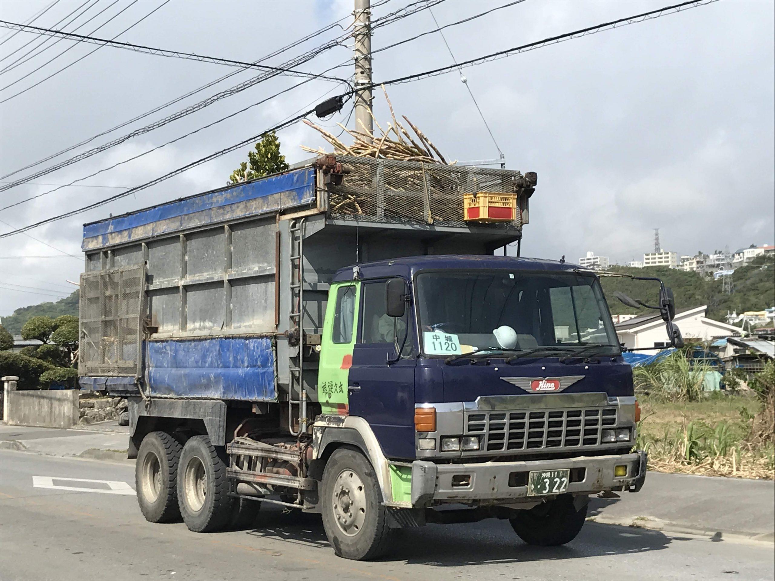 たくさんのウージを運んでくるトラック