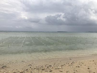 島尻の海広がる鉄筋