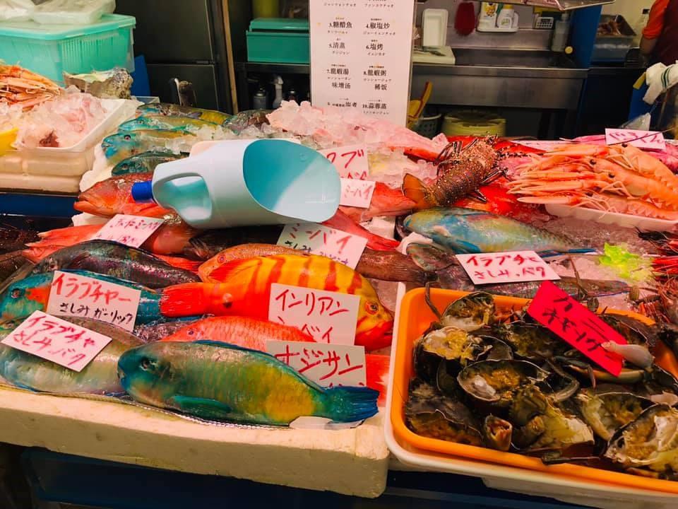 色鮮やかな沖縄の魚
