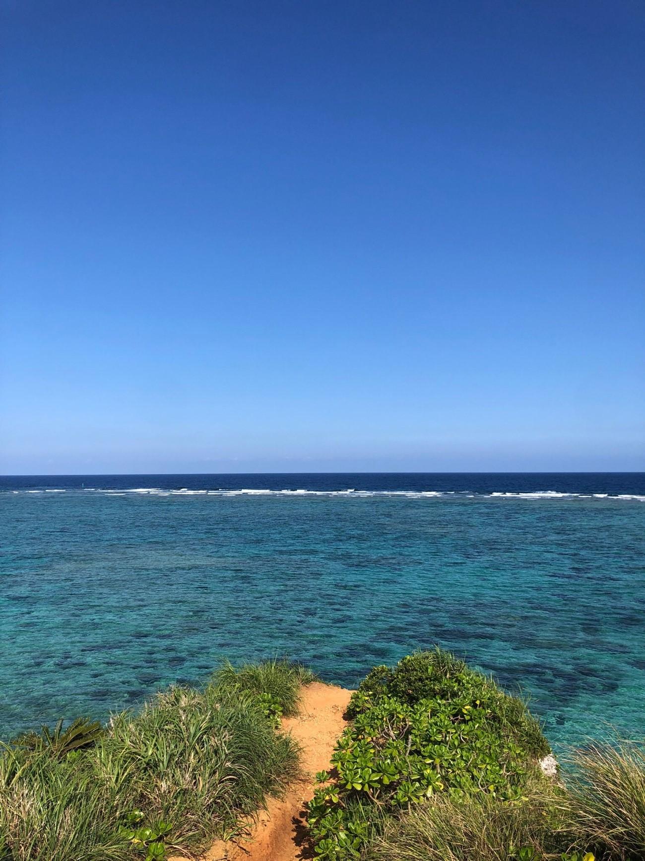 珊瑚礁さんご礁