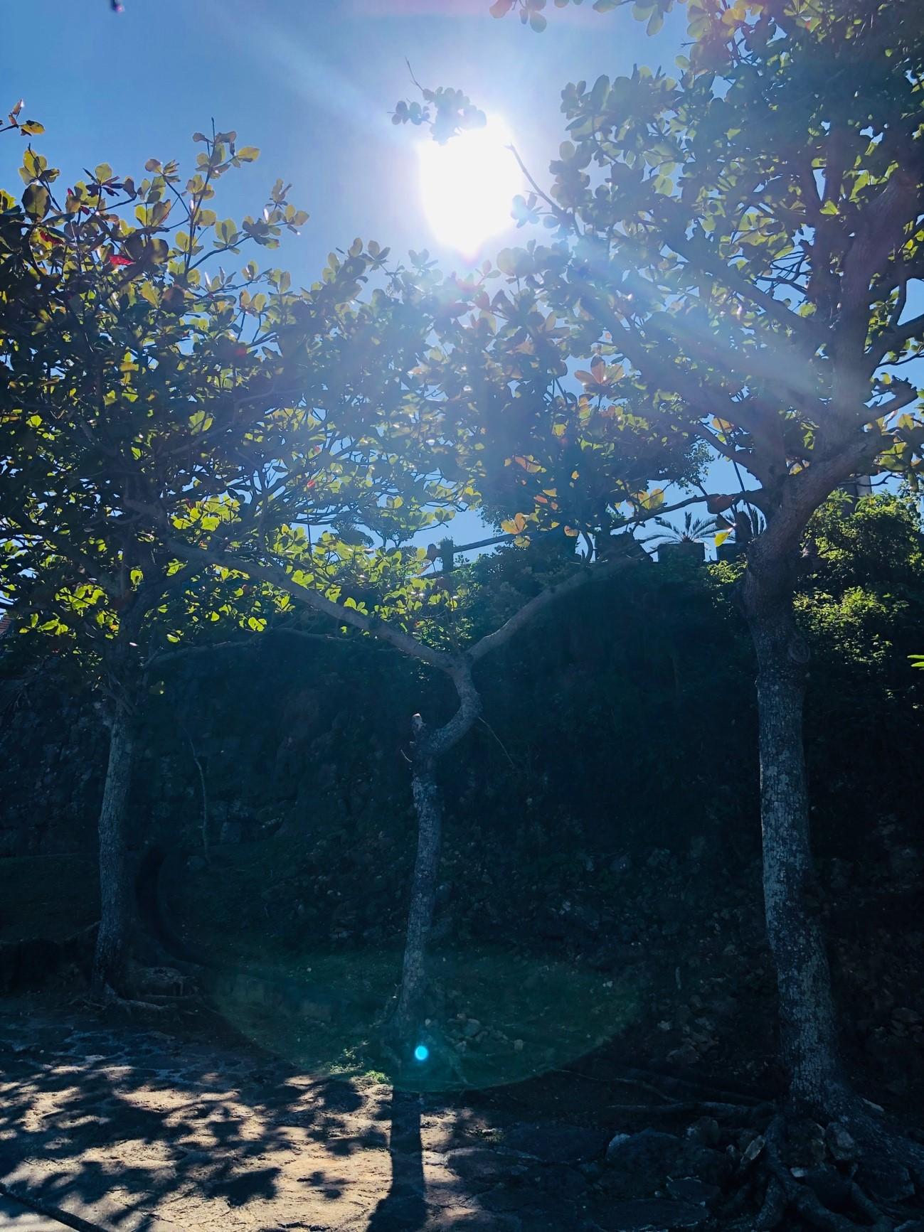 沖縄県糸満市「平和祈念公園」太陽の光が反射して神々しい一枚