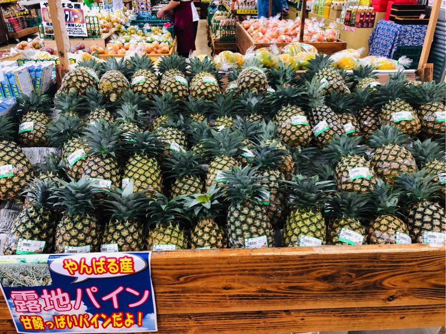 「道の駅」許田 やんばる物産センター 露地パイン