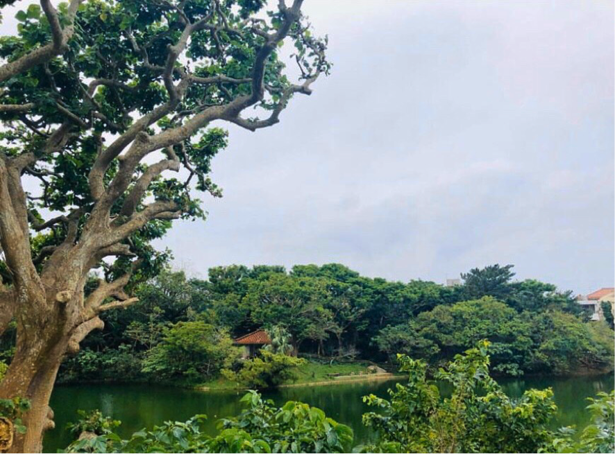 「龍潭池」からの眺め
